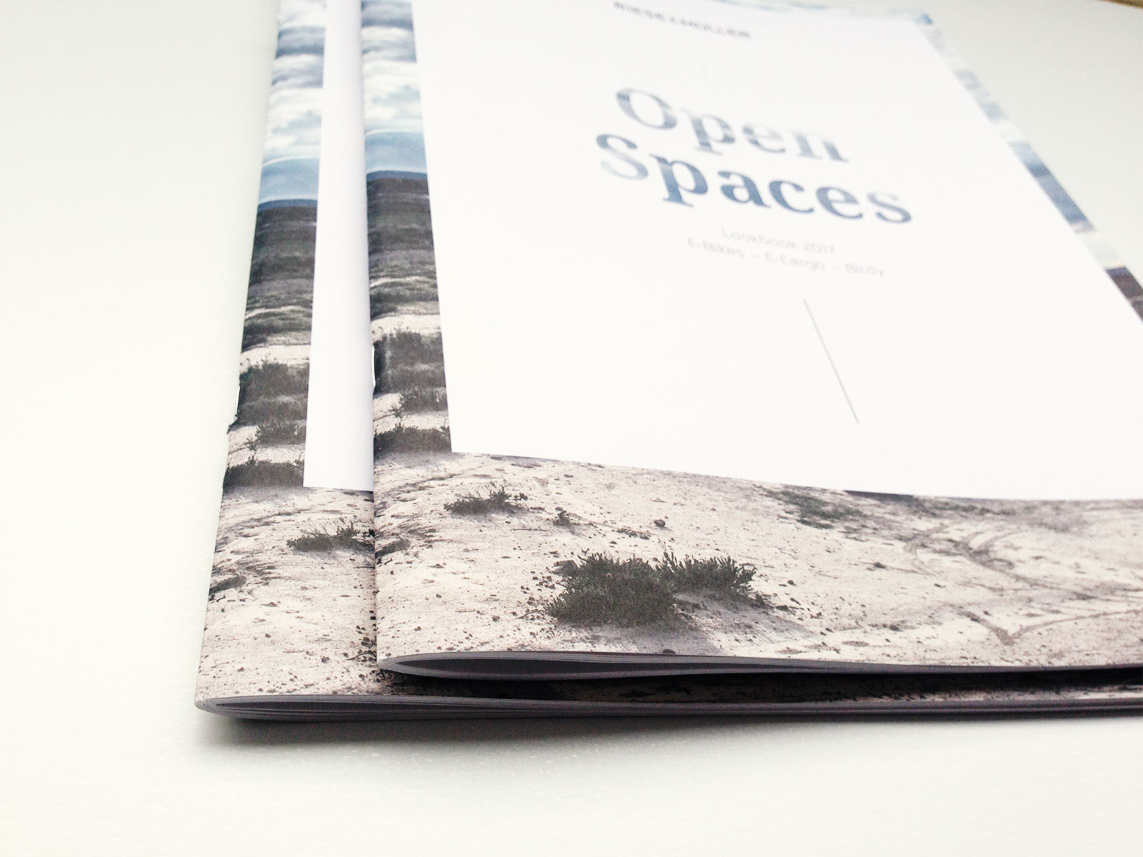 riese_mueller_open_spaces_17